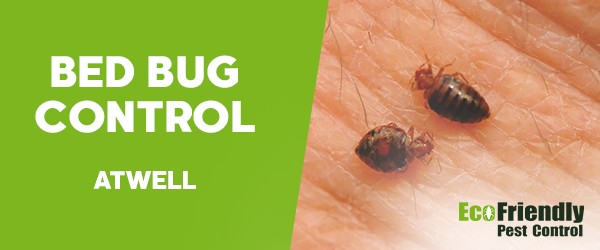 Bed Bug Control  Atwell