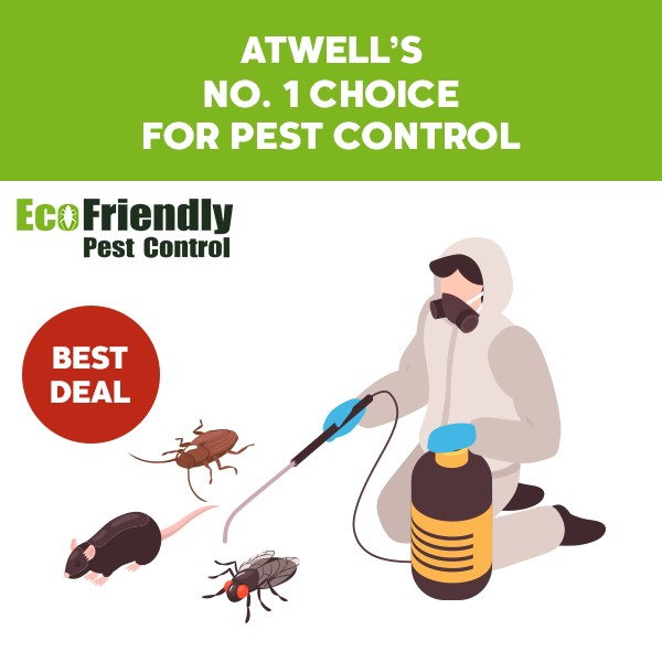 Pest Control Atwell