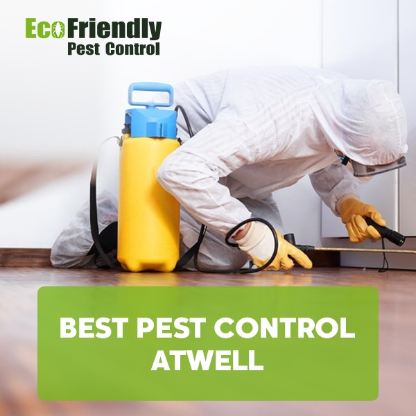 Best Pest Control  Atwell