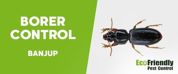 Pest Control Banjup
