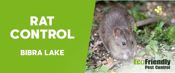 Pest Control Bibra Lake
