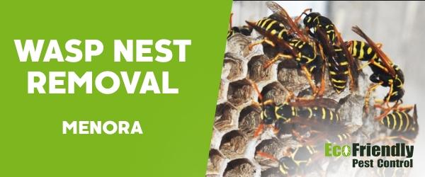 Wasp Nest Remvoal  Menora