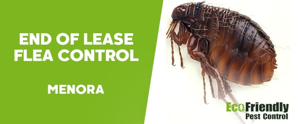End of Lease Flea Control  Menora