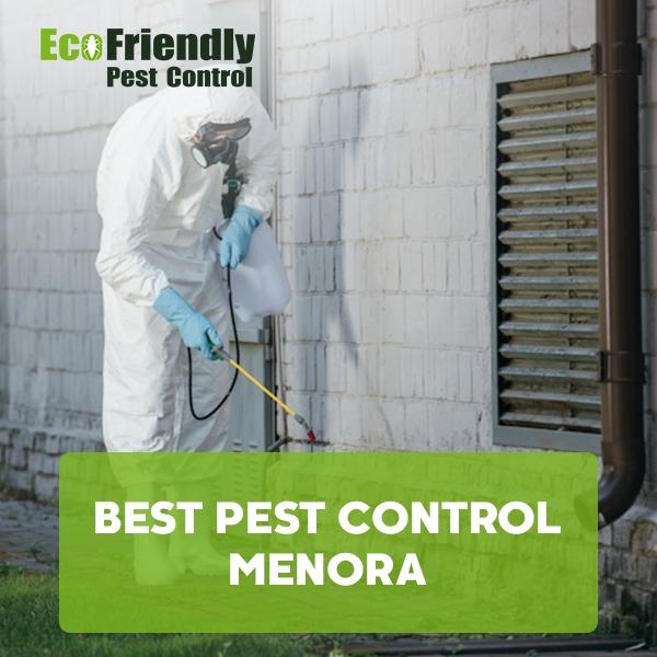 Best Pest Control  Menora