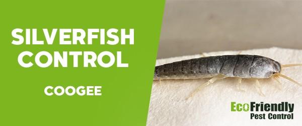 Silverfish Control  Coogee