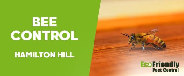 Bee Control  Hamilton Hill
