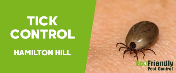 Ticks Control  Hamilton Hill