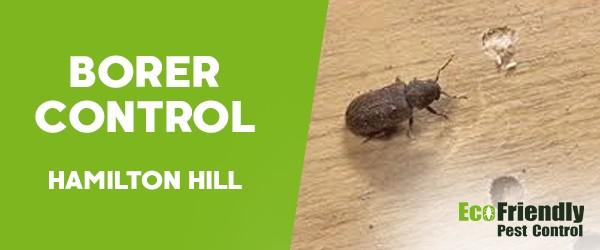 Borer Control  Hamilton Hill