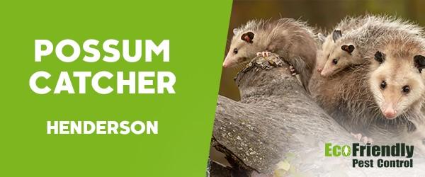 Possum Catcher  Henderson