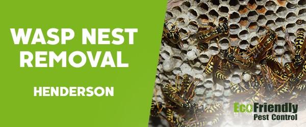 Wasp Nest Remvoal  Henderson