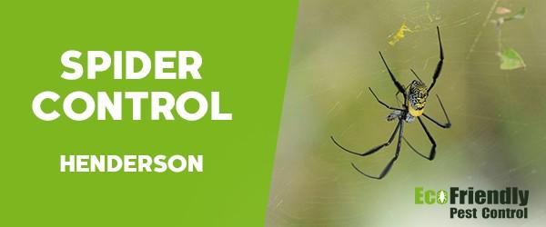 Spider Control  Henderson