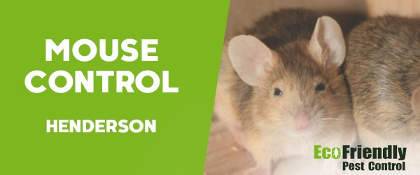 Mouse Control  Henderson