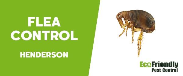 Fleas Control  Henderson