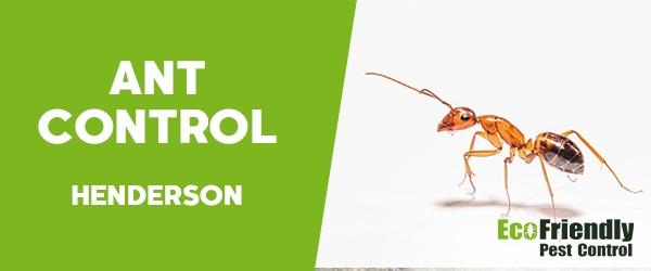 Ant Control  Henderson