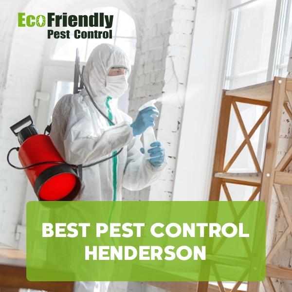 Best Pest Control  Henderson