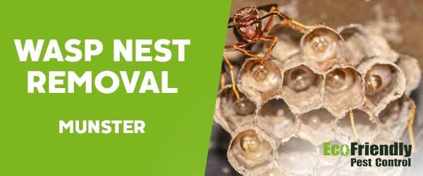 Wasp Nest Remvoal  Munster
