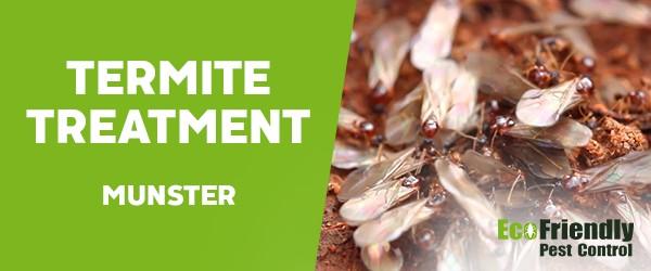 Termite Control  Munster