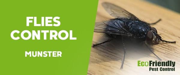 Flies Control  Munster