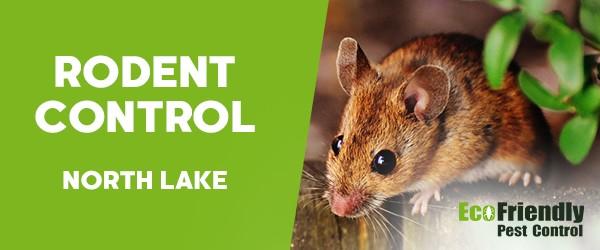 Pest Control North Lake