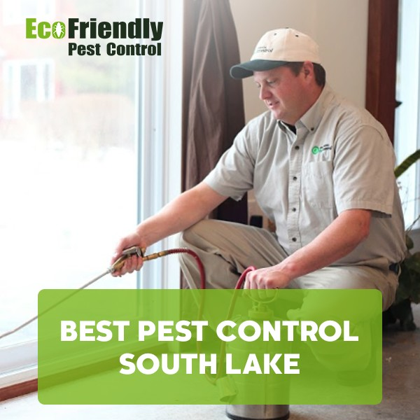 Best Pest Control  South Lake