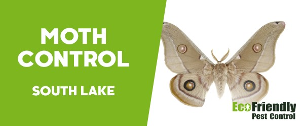Moth Control  South Lake