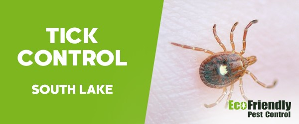 Ticks Control  South Lake