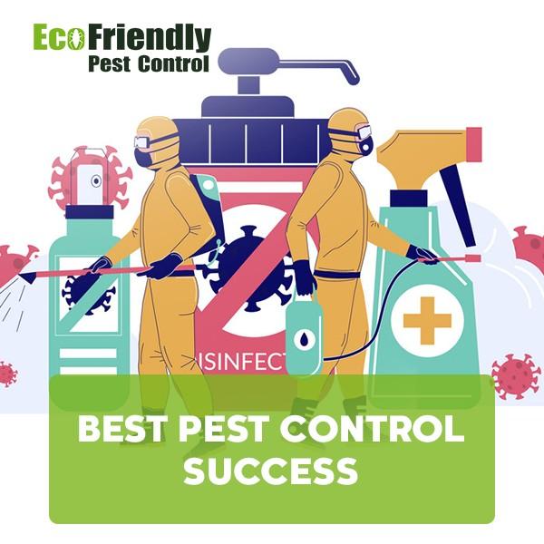 Best Pest Control Success