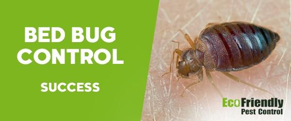 Bed Bug Control Success