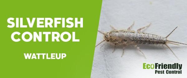 Silverfish Control  Wattleup