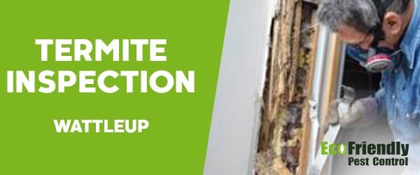 Termite Inspection  Wattleup