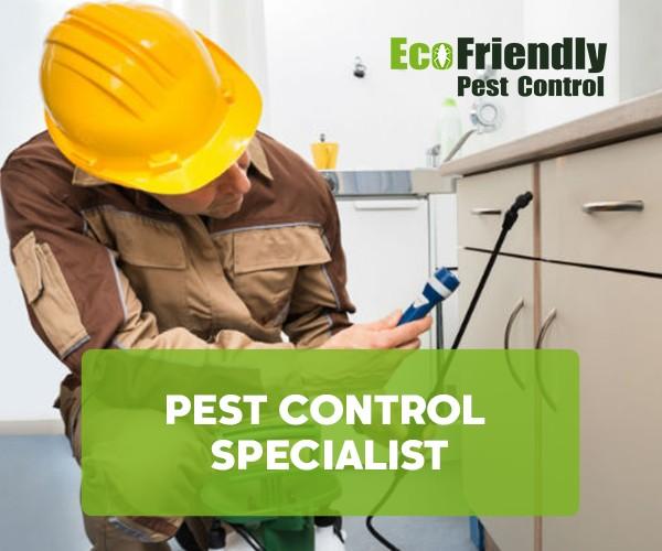 Pest Control Yangebup