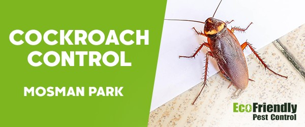 Cockroach Control  Mosman Park