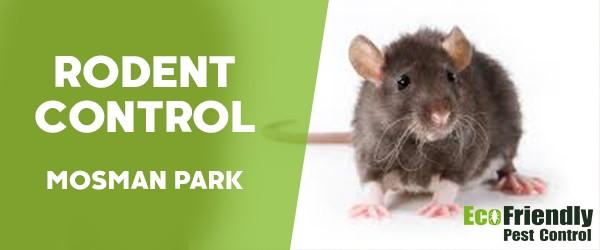 Rodent Treatment  Mosman Park