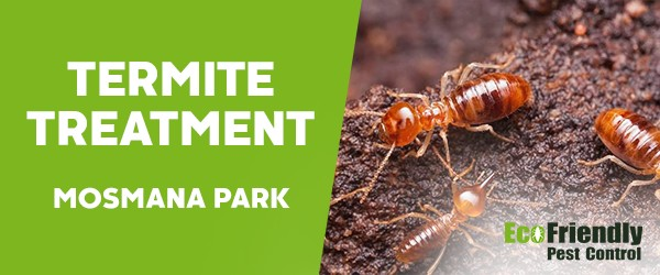 Termite Control  Mosman Park