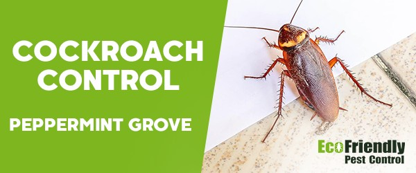 Cockroach Control  Peppermint Grove