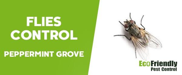 Flies Control  Peppermint Grove