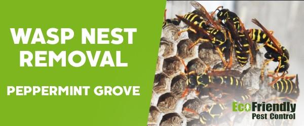 Wasp Nest Remvoal  Peppermint Grove