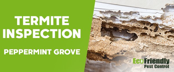 Termite Inspection  Peppermint Grove