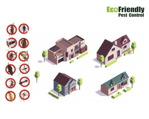 Pest Control Beaconsfield