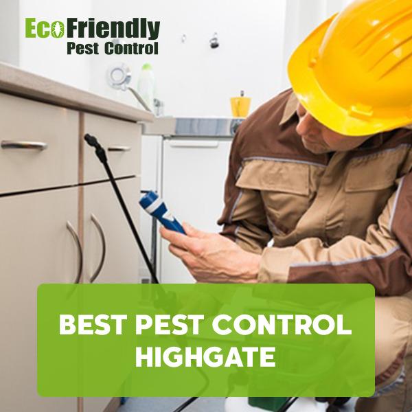 Best Pest Control  Highgate