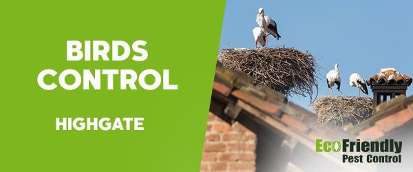 Birds Control  Highgate