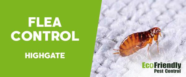 Fleas Control  Highgate