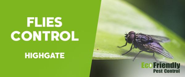 Flies Control  Highgate