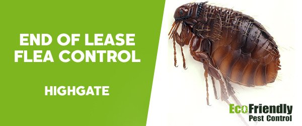 End of Lease Flea Control  Highgate