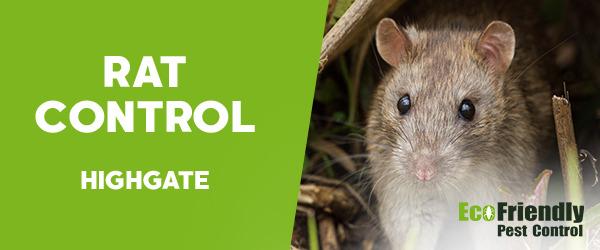 Rat Pest Control  Highgate