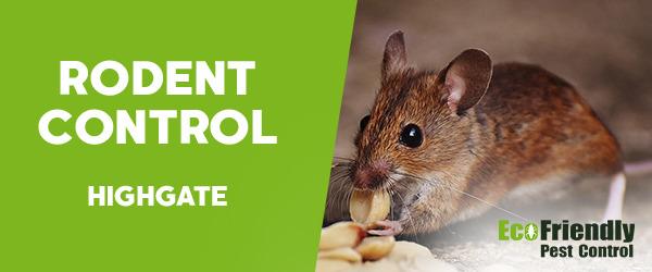 Rodent Treatment  Highgate