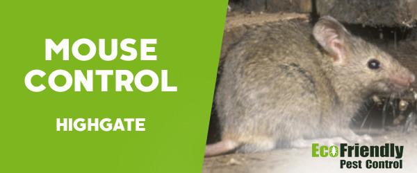 Mouse Control  Highgate
