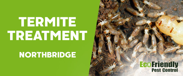 Termite Control  Northbridge