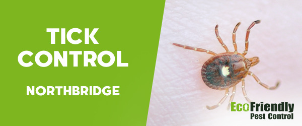Ticks Control  Northbridge