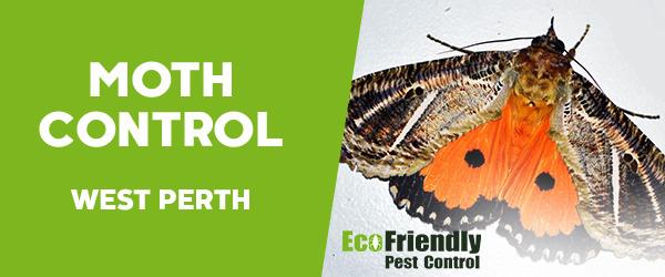 Moth Control  West Perth